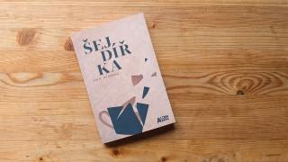 Recenze na knihu Šejdířka